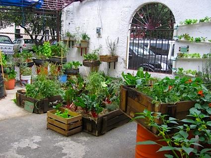 romita-urban-garden